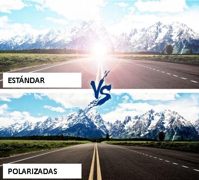 POLARIZADAS-ante